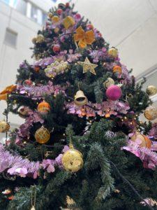 外来中庭にクリスマスツリー